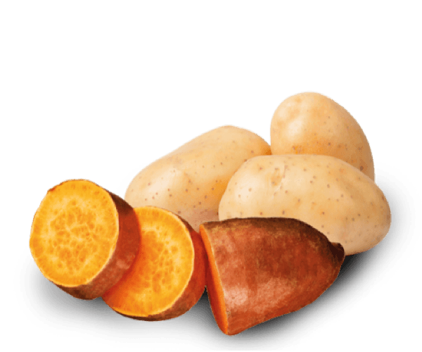 Potato & sweet potato